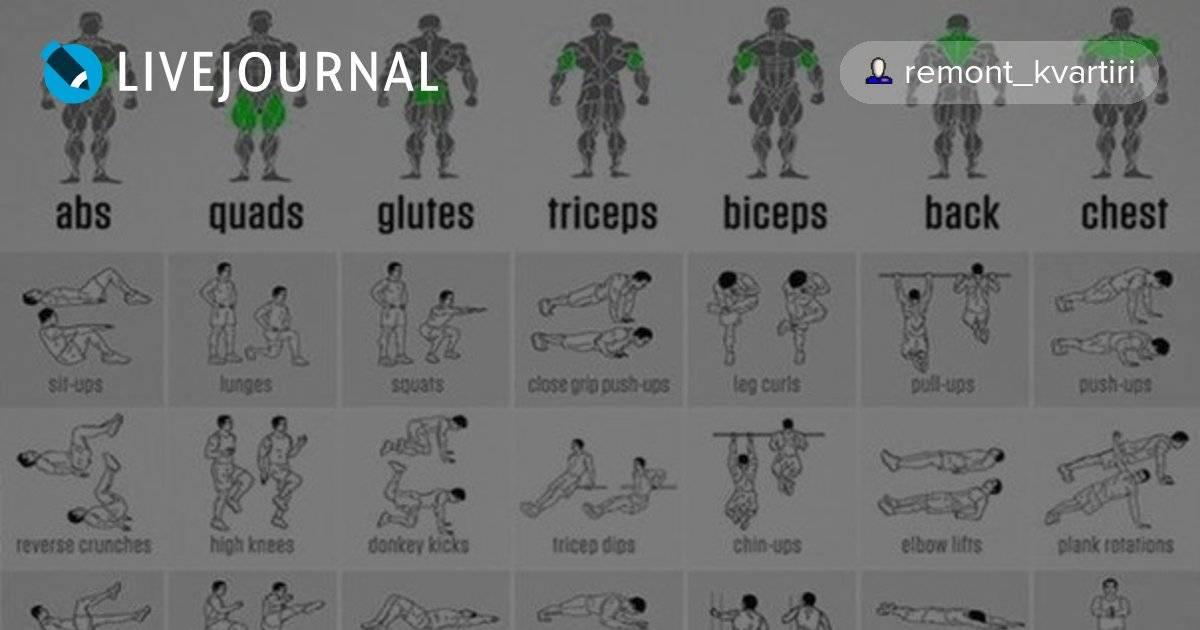 10 упражнений воздействующие на все мышечные группы