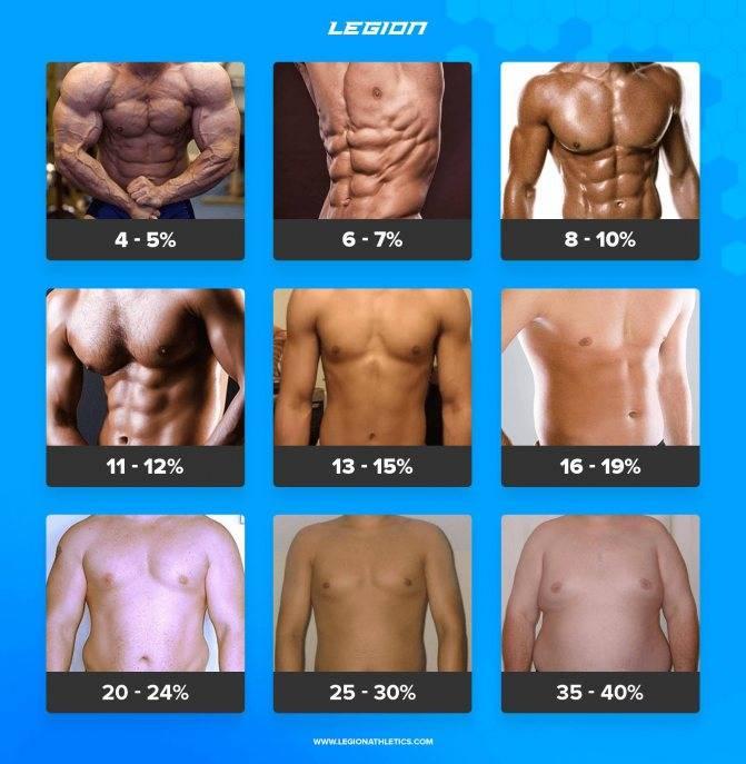 Процент жира в организме. кого, чего и сколько?