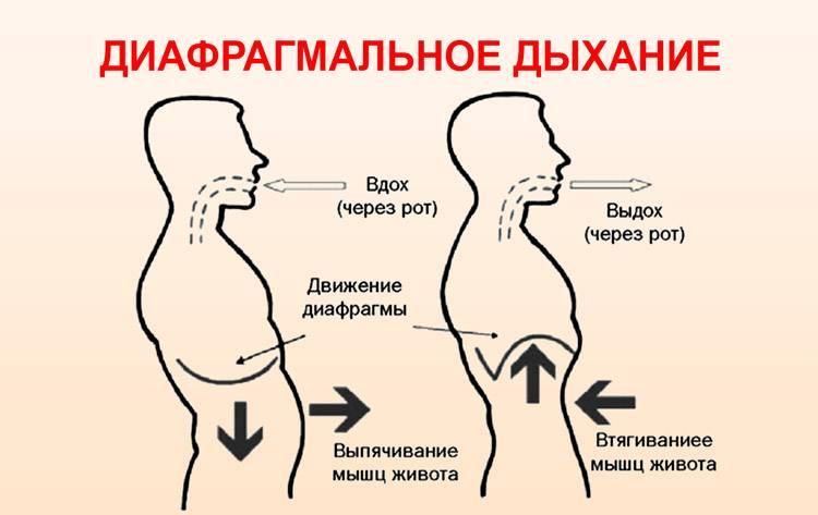 Как правильно дышать - животом или грудью?