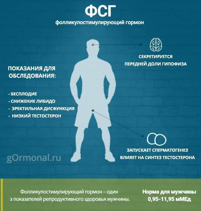 9 способов повысить уровень тестостерона естественным путем