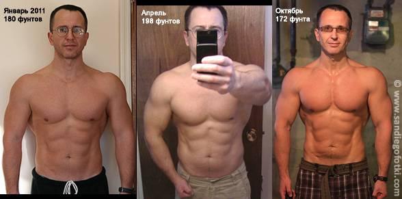 Сколько нужно отжиматься в день для роста мышц | musclefit
