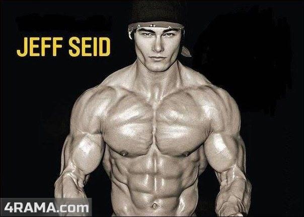 Джефф сейд (jeff seid). биография и программа тренировок. лучшие продукты в бодибилдинге сайда в бодибилдинге
