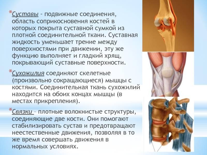 Упражнения после операции на колене, при травме колена