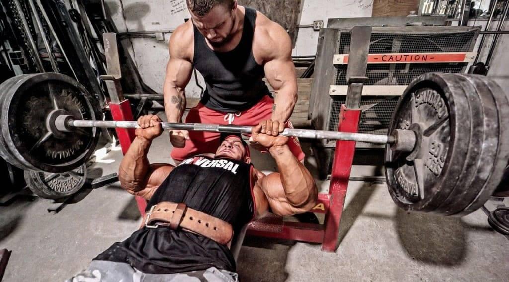 Гипертрофия мышц: обзор принципов тренировки для увеличения массы мышц. часть 1   fpa