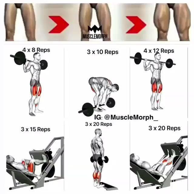 Базовые упражнения на ноги в домашних условиях