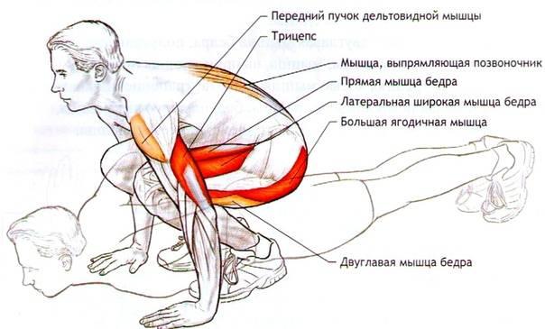 Упражнение «книжка» для укрепления мышц пресса