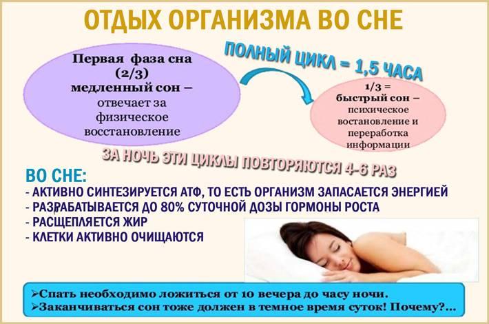 Лучшие позы для здорового сна с научной точки зрения (полное руководство) - fitzdrav