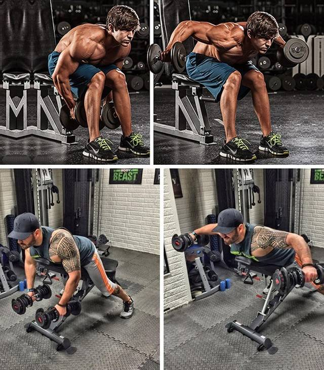 Как эффективно накачать дельтовидные мышцы