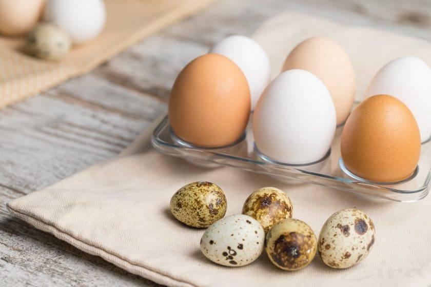 Содержание холестерина в яйцах: можно ли есть продукт при повышенном показатели и риске развития атеросклероза, сколько штук составляет дневная норма и в каком виде их лучше есть