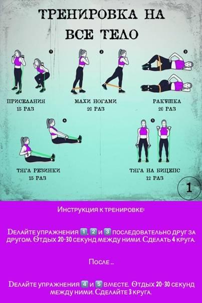 Программа тренировки круговой для девушки: примеры эффективных упражнений для женщин