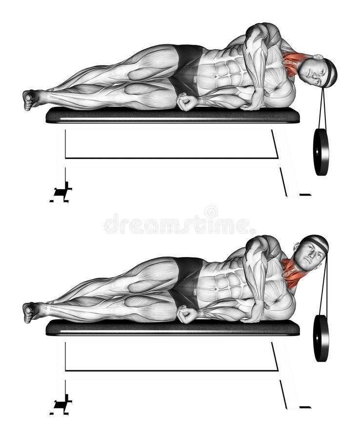 Как накачать шею в домашних условиях, описание упражнений, фотографии