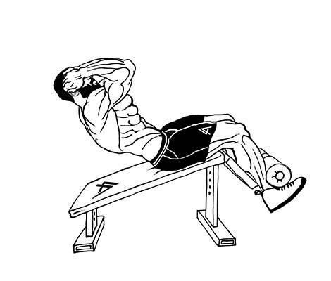 Обратные скручивания на пресс: правильная техника выполнения и общее описание упражнения