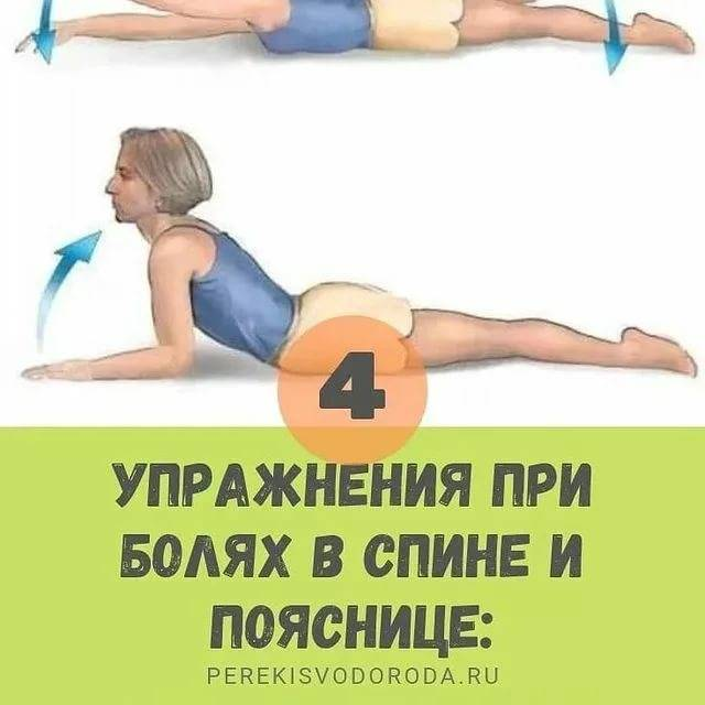 Упражнения для спины – комплекс для укрепления мышц и позвоночника в домашних условиях