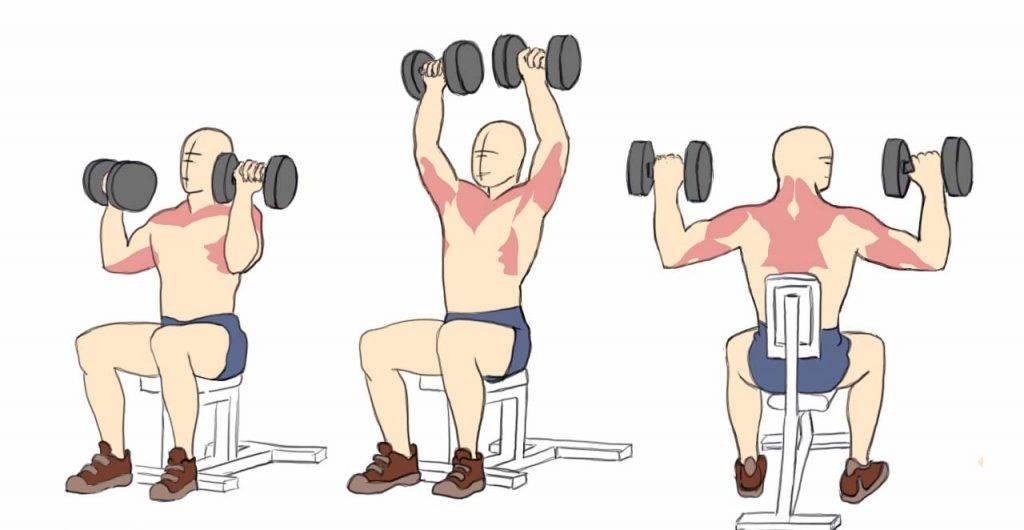 Жим гантелей вниз головой: как выполнять жим на скамье с отрицательным наклоном