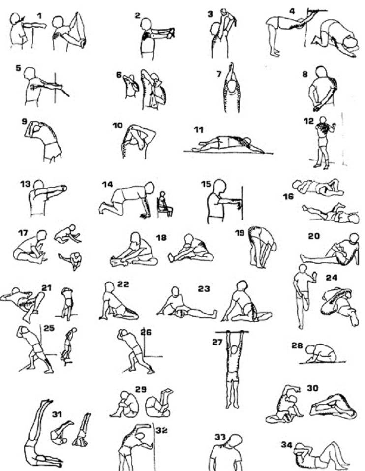 Растяжка: комплекс упражнений в домашних условиях на все тело