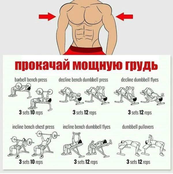 Тренировочный план для женщин, часть №3: грудь. • bodybuilding & fitness