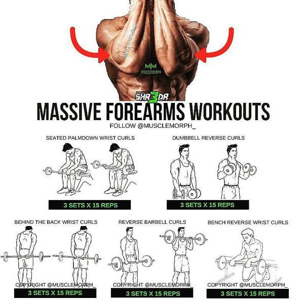 Упражнения на предплечья: сделай себе мощные