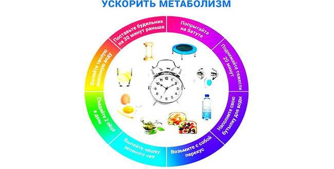Ускорение обмена веществ: план по ускорению метаболизма и программа питания