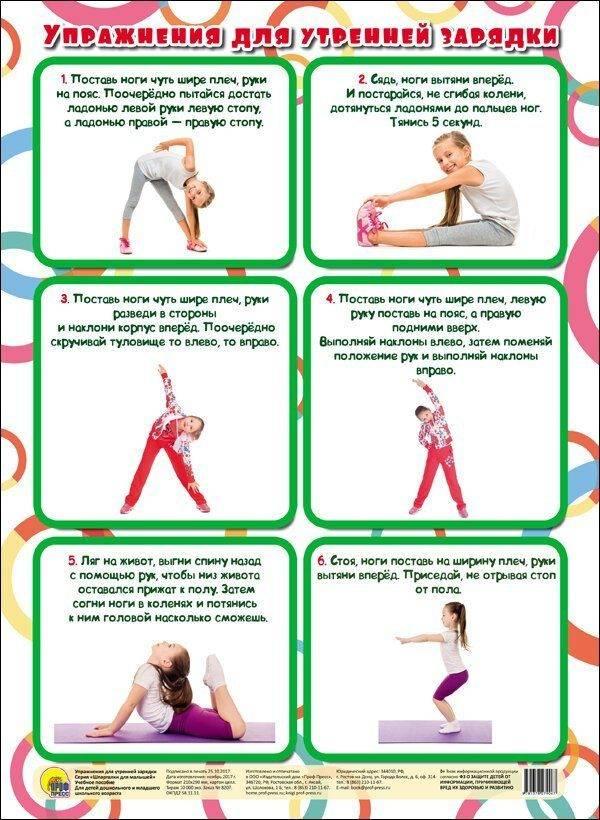 Утренняя зарядка: комплекс упражнений для взрослых, польза и график занятий в домашних условиях