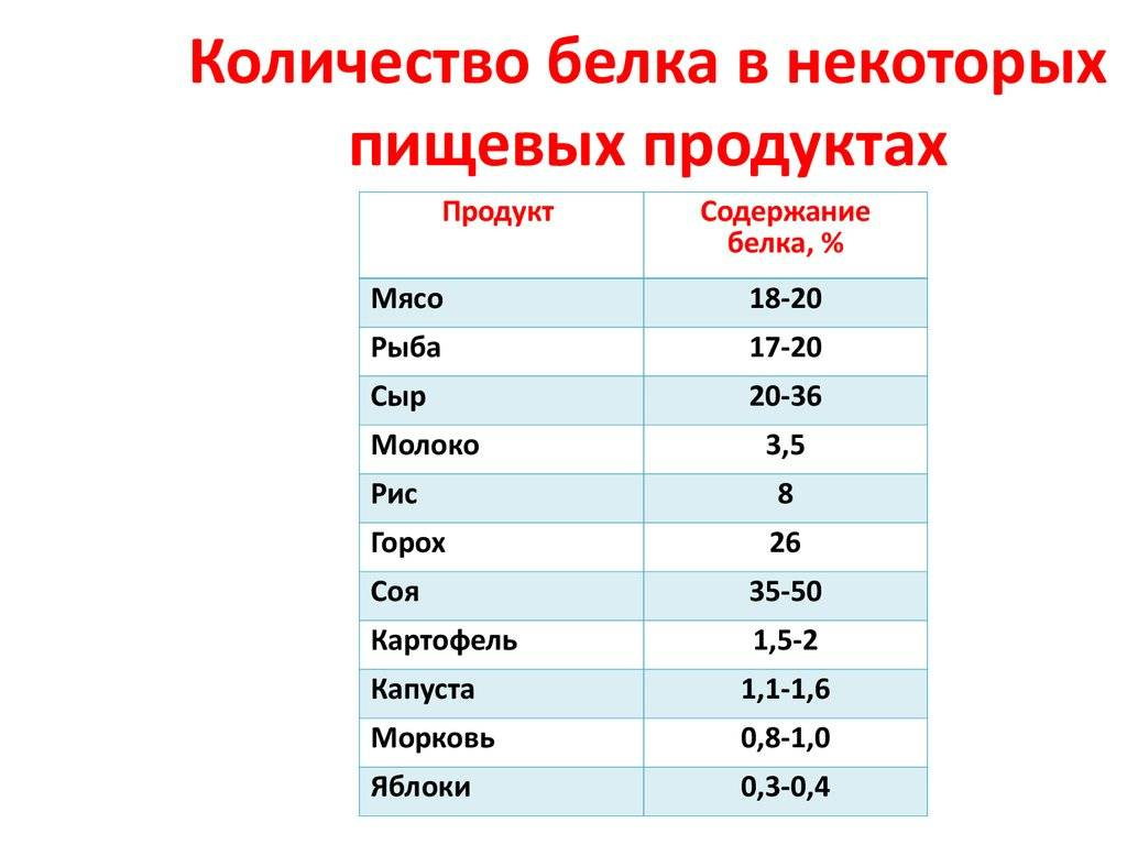 Белок в пищевых продуктах. таблица белков в продуктах питания