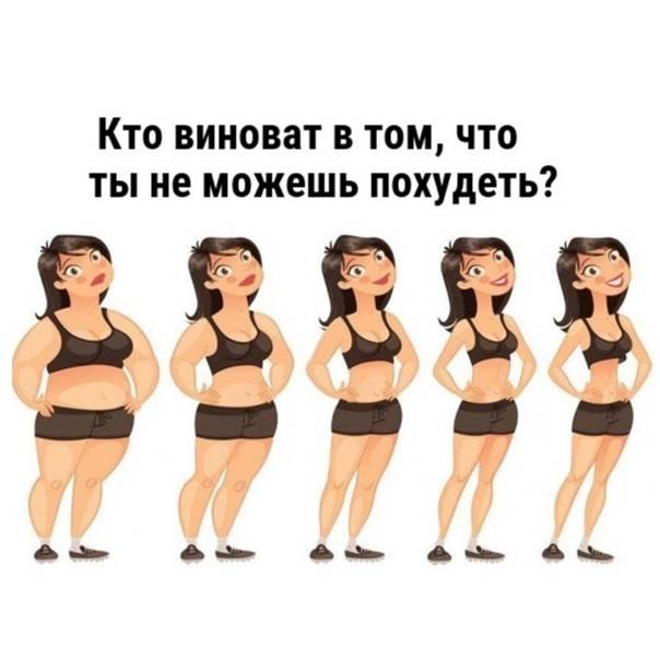 10 популярных вопросов о похудении