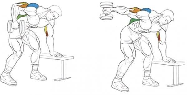Как накачать трицепс гантелями: топ-5 лучших упражнений