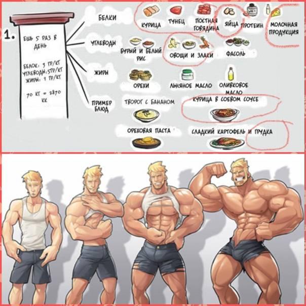 Курс и схемы применения гормонов роста