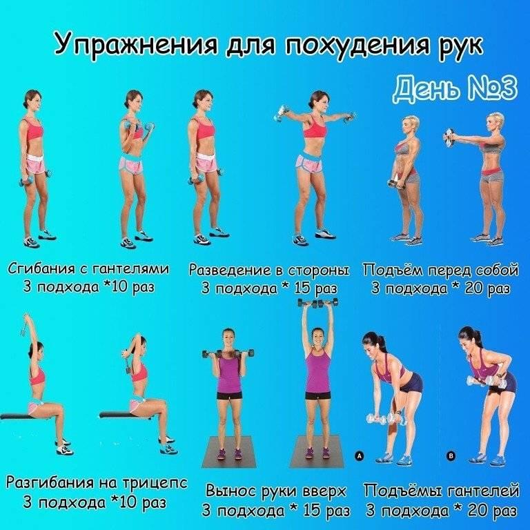 Упражнения с гантелями для женщин в домашних условиях