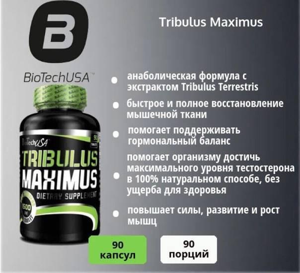 Эффекс® трибулус