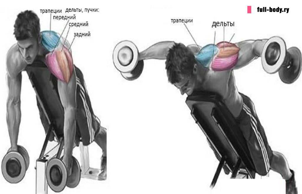 Разведение рук в тренажере на плечи. отведение рук назад в тренажере пек-дек. сведение рук в кроссовере