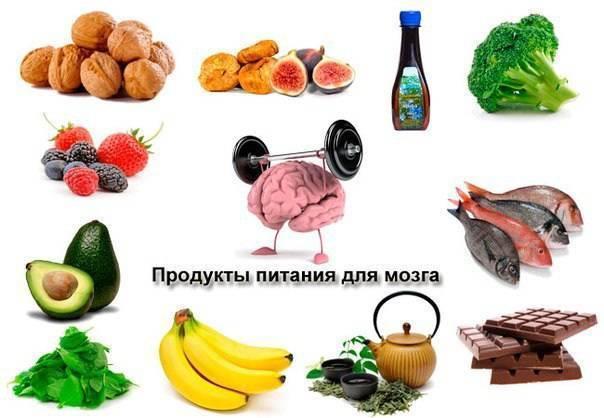 Лучшие продукты питания для мозга и нервной системы