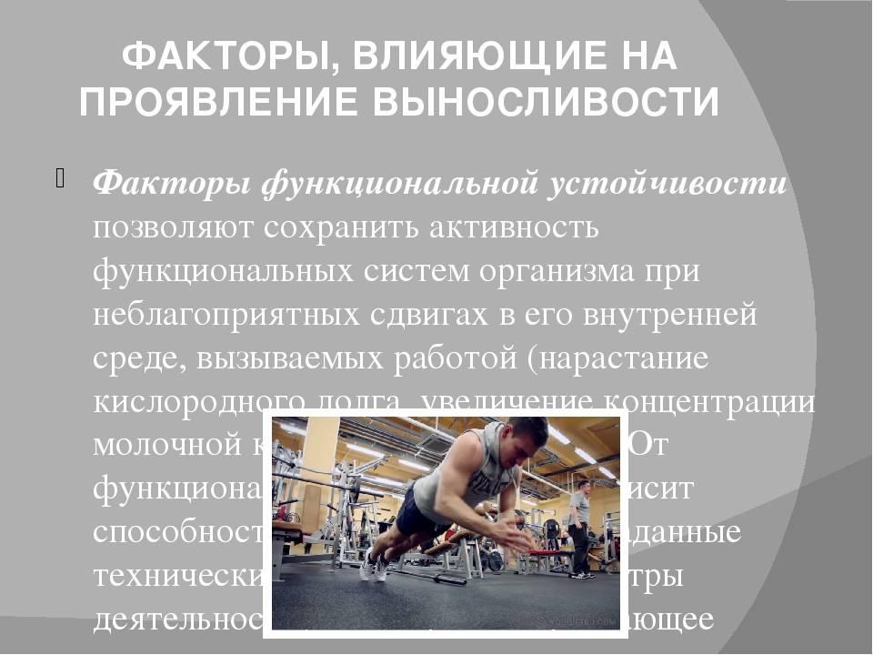 Упражнения для развития выносливости. новый комплекс упражнений