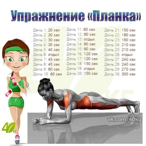 Упражнение планка - как правильно делать, вариации и несложные комплексы