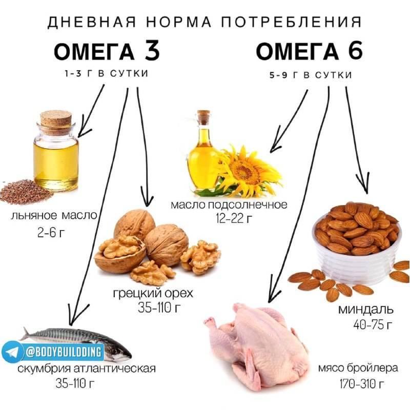 Полиненасыщенные жирные кислоты: роль, источники   food and health