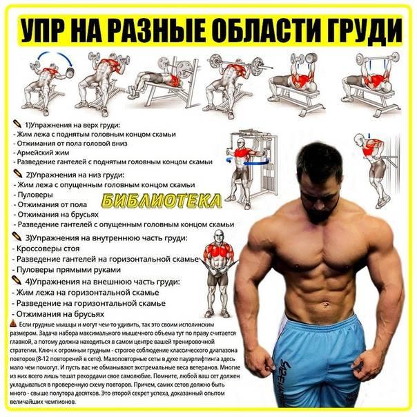 Качаем грудные мышцы в домашних условиях без тренажеров