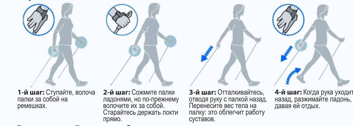 Скандинавская ходьба с палками: техника ходьбы для пожилых, правила и противопоказания | sh