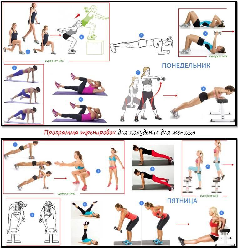 Программа тренировок для девушек и женщин в зале: комплекс упражнений и план занятий