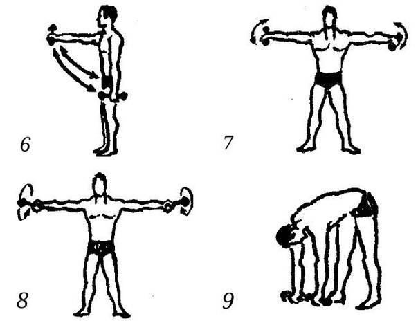 Упражнения с гантелями в домашних условиях для женщин и мужчин