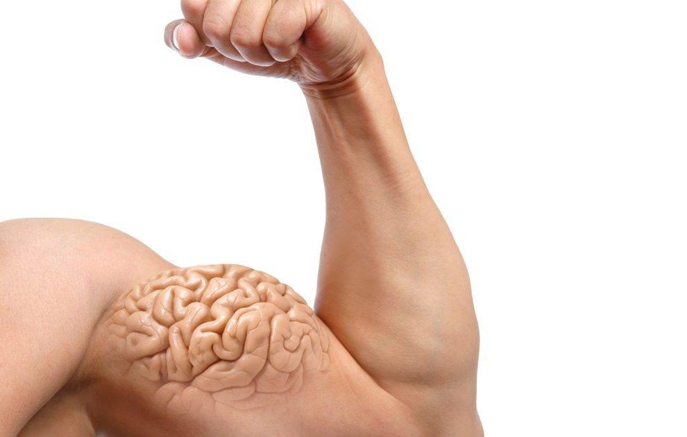 Ментальная связь мозг-мышцы: сверхэффективный тренинг