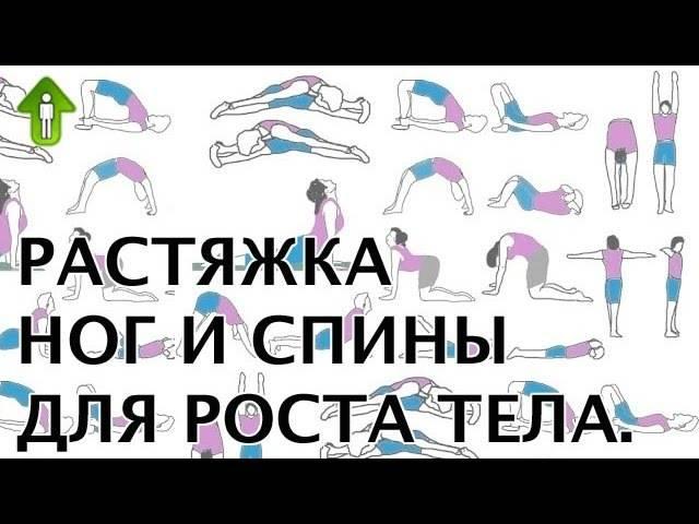 Как увеличить рост человека: эффективные упражнения и питание для увеличения роста - tony.ru
