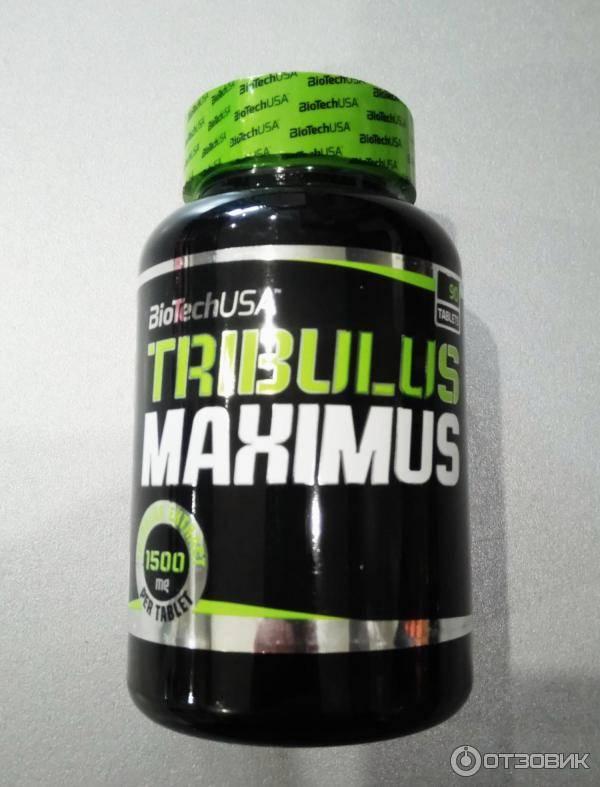 """""""трибулус"""": эффект, описание, состав, польза и вред"""