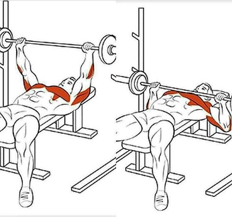Жим гантелей лежа на наклонной скамье: как эффективно выполнять жим гантелей под положительным углом 35, 40 градусов