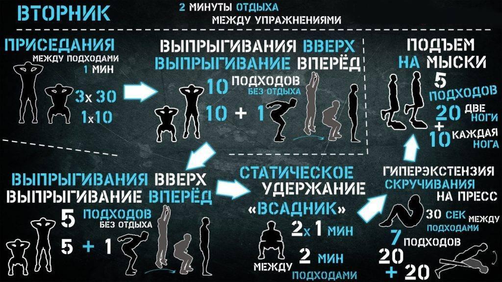Калистеника для начинающих: рекомендации и программа упражнений