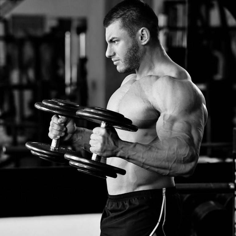 Мышцы предплечья: анатомия, как накачать в домашних условиях и зале