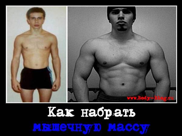 Сколько мышечной массы можно набрать без стероидов