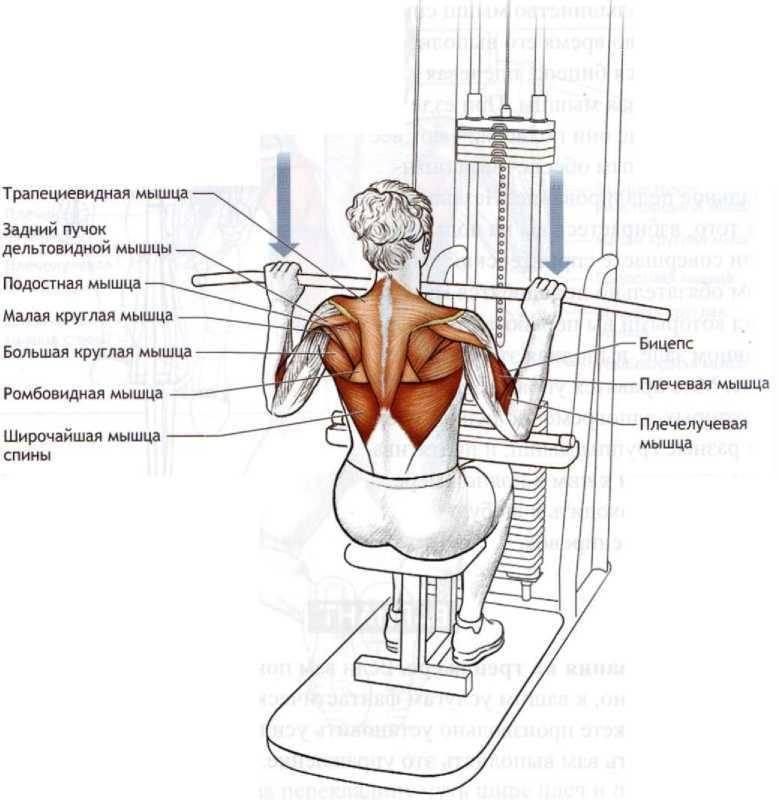 Тяга верхнего блока к груди или за голову