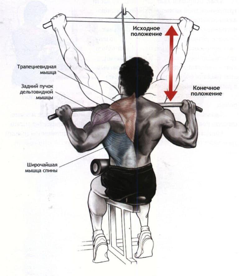 Тяга вертикального блока за голову: как делать и что дает упражнение?