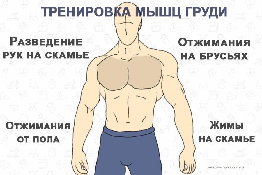 Как убрать жир с грудных мышц мужчинам: рекомендации и тренинг