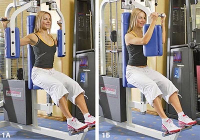 Сведение рук в тренажере – sportfito — сайт о спорте и здоровом образе жизни