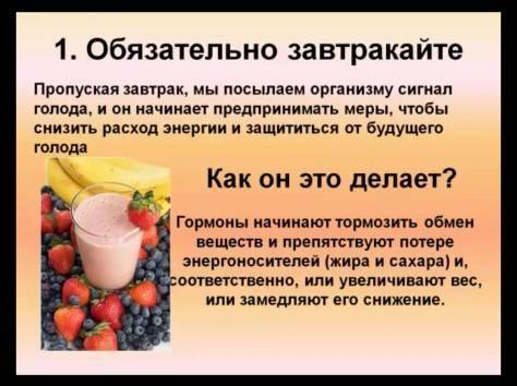 Продукты для обмена веществ   компетентно о здоровье на ilive